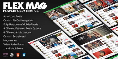flex mag wordpress theme review